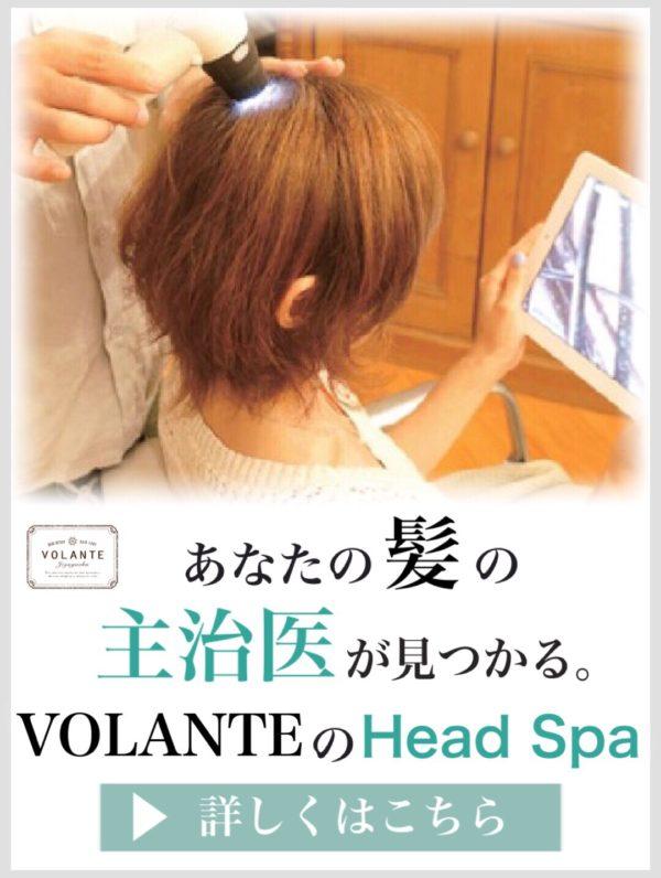 VOLANTEのHead Spa